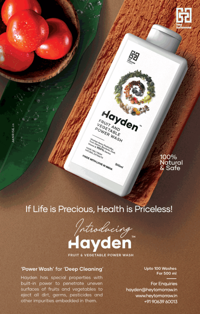Hayden fruit and vegetable wash