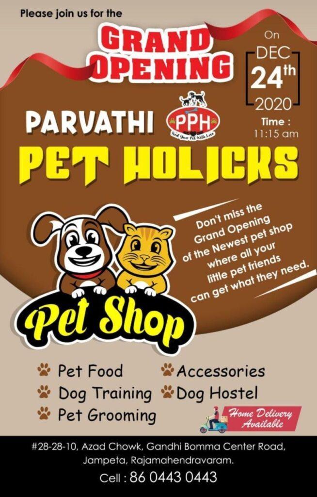 Parvathi Pet Holicks