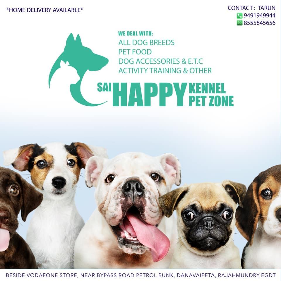 Sai Happy Kennel Pet