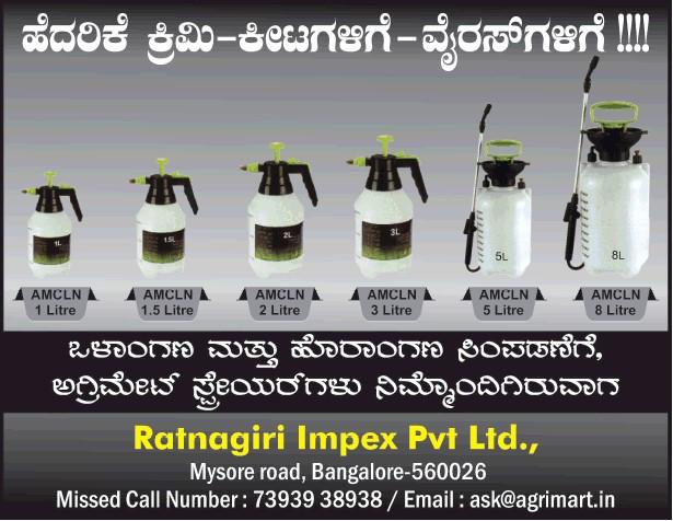 Ratnagiri Impex